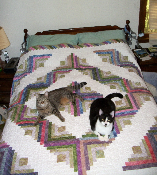 Martha Bagley's 90th Birthday Quilt with Cats